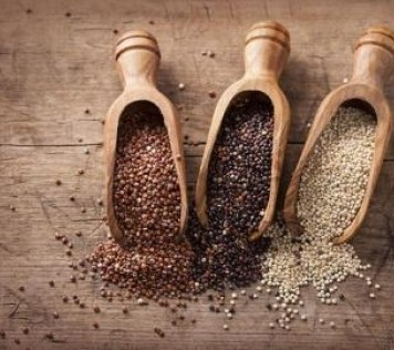 Quinoa: The treasure of the Incas