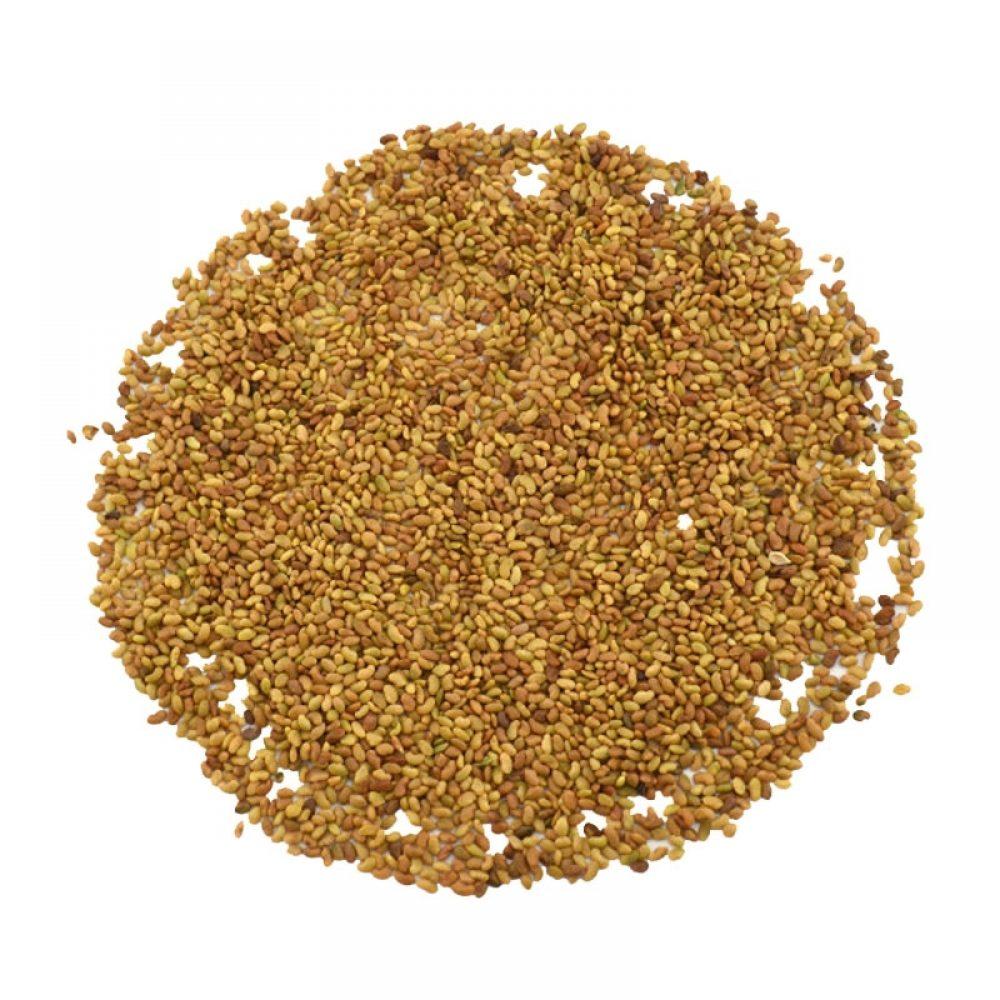 Alfalfa σπόροι για φύτρα (ΑΛΦΑΛΦΑ)