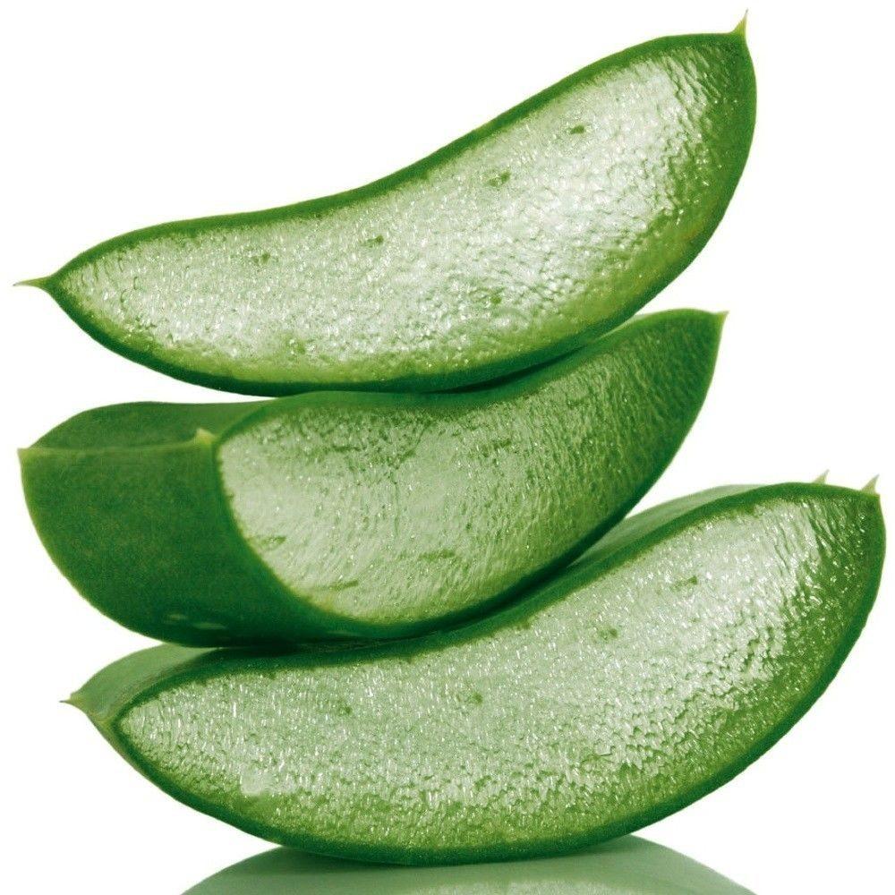 Αλόη βέρα έλαιο (Aloe vera oil)