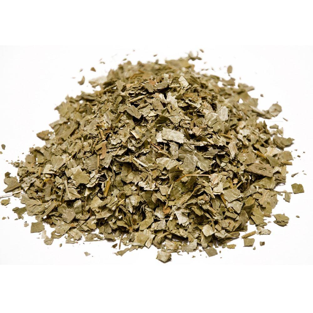 Ladies mantle (Alchemilla vulgaris)