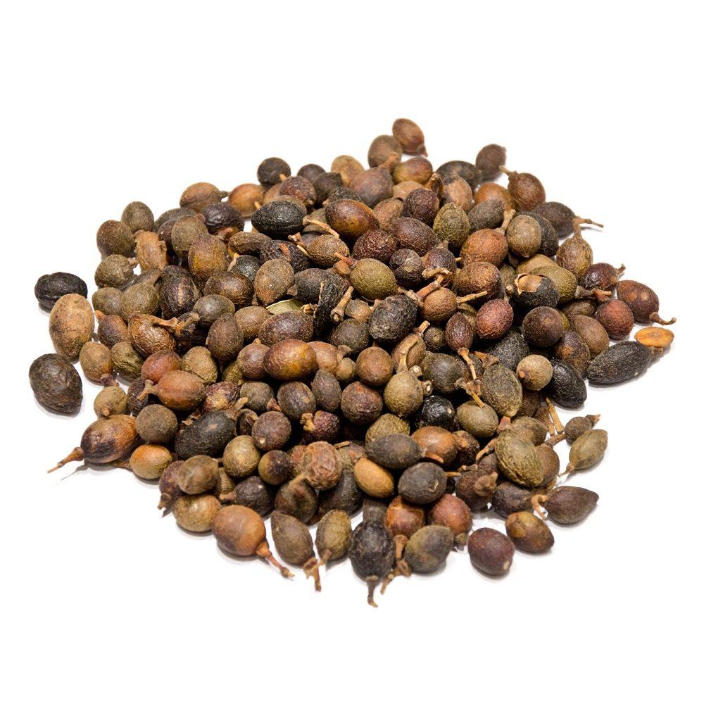 Laurel Berries (Laurus Nobilis)