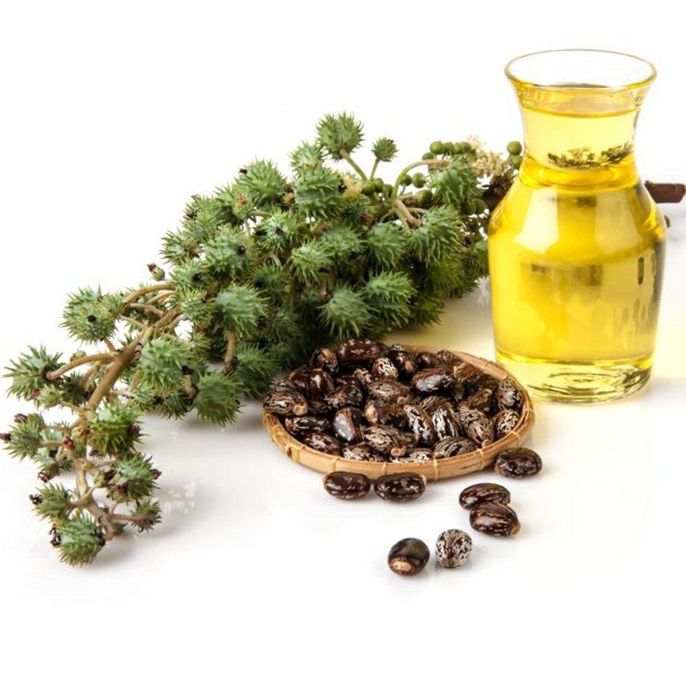 Καστορέλαιο (Castor Oil)