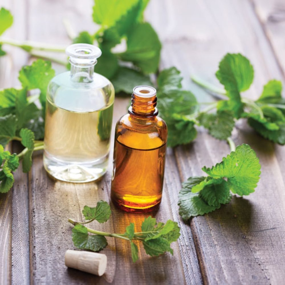 Common Ivy Carrier Oil