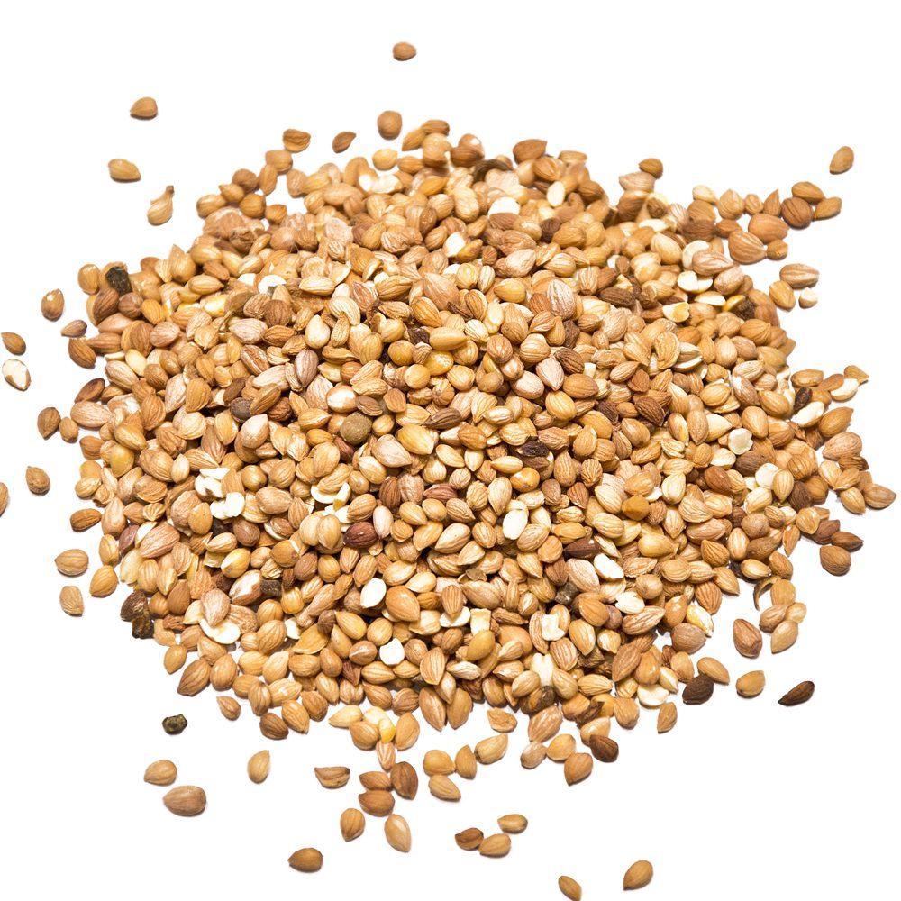 Mahlab seeds